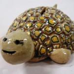 Turtle Bank